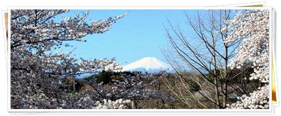 富士見園からの遠景