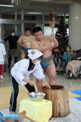 相撲部餅a