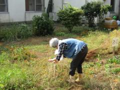 園庭 004