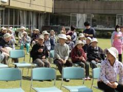 H28富士見園桜3